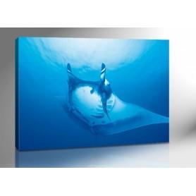 ROCHEN TIEFSEE 140 x 100 cm