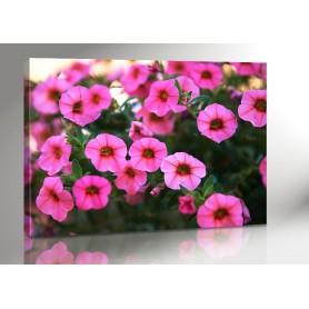 MORNING FLOWER 140 x 100 cm