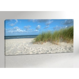 DARSS STRAND | OSTSEE | FISCHLAND | 200 x 100 cm