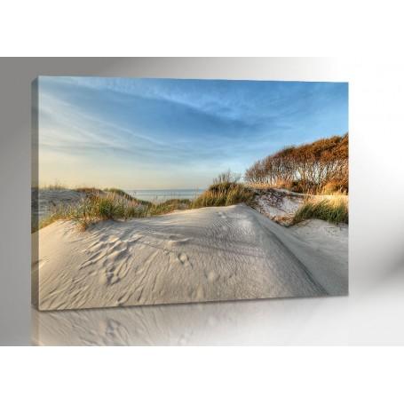 DARSS | GROSSE DÜNE | OSTSEE | FISCHLAND | 140 x 100 cm