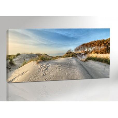 DARSS   GROSSE DÜNE   OSTSEE   FISCHLAND   200 x 100 cm