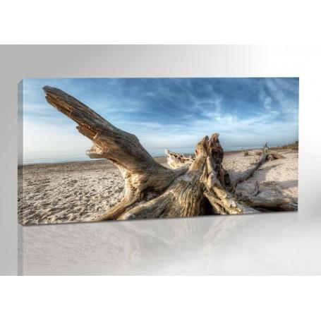 DARSS | HOLZ AM STRAND | OSTSEE | FISCHLAND | 200 x 100 cm